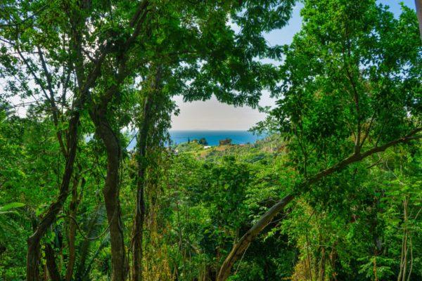 Ocean View Lot Zolitur Road, Roatan