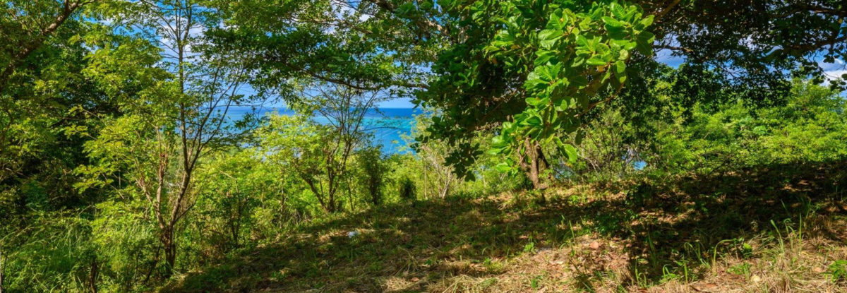 Punta Gorda Ocean View Lot
