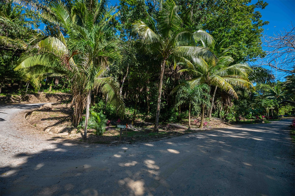 Lot 18-1 Palmetto Bay Plantation, Roatan 2