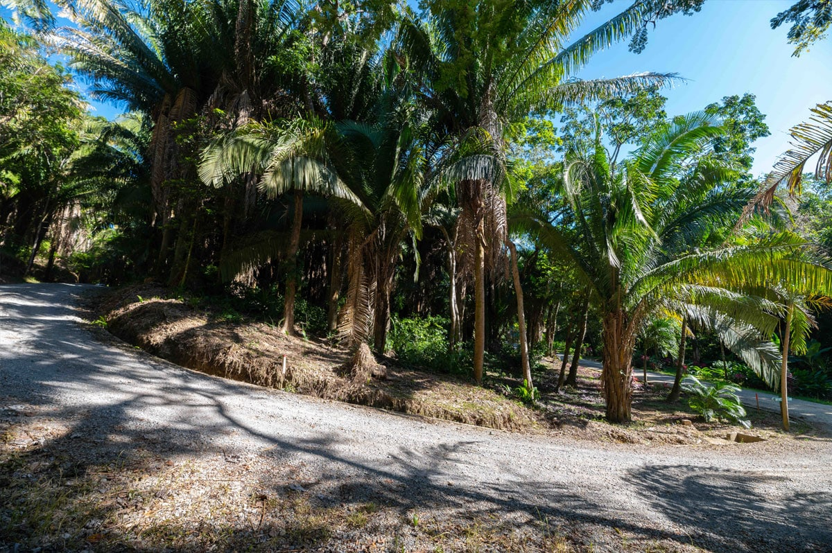 Lot 18-1 Palmetto Bay Plantation, Roatan 3