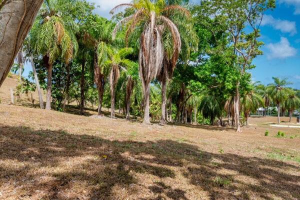 Guaiabara Hillside Lot H-8